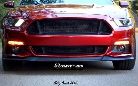 Ford Mustang S550 (2015-2017) Upper ONLY RaceMesh Grille 3-Chamber Version - Original Style Weave